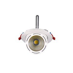چراغ فکی توکار 30 وات S.P.N مدل HL236